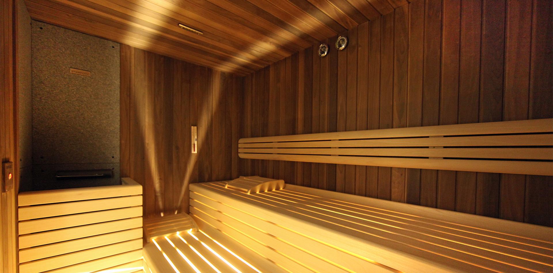 sauna executive 1